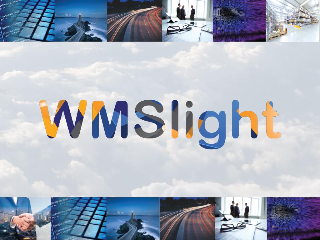WMS je postao light!